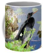 Male Anhinga Coffee Mug