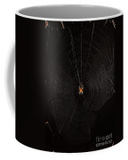 Marbled Orb Weaver Spider Coffee Mug