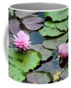 Pink Water Lily Series Coffee Mug
