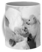 Polar Bear Cubs Coffee Mug