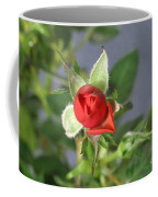 Red Rose Blooming Coffee Mug