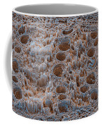 Rotten Oak Wood, Sem Coffee Mug