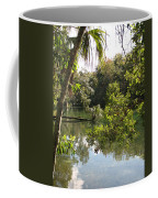 Swamp Reflection Coffee Mug