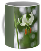 Turk's Cap Lily Coffee Mug
