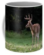 4 X 4 Buck Coffee Mug