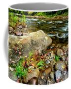 Fall Along Williams River Coffee Mug
