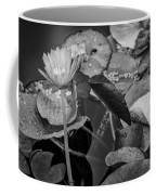 4466- Lily Pads Black And White Coffee Mug