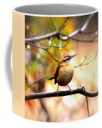 4646 - Carolina Wren Coffee Mug