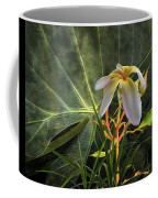 4662 Coffee Mug