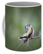 4864-002 - Ruby-throated Hummingbird Coffee Mug