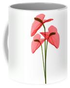 Anthurium Flowers, X-ray Coffee Mug