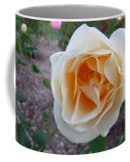 Australia - White Rose Flower Coffee Mug