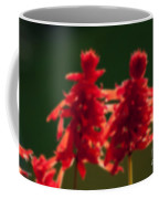 Blurred Seasonal Flower With Dark Background Coffee Mug