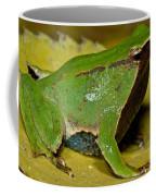 Darwins Frog Coffee Mug