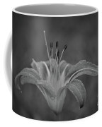 Day Lilly Coffee Mug