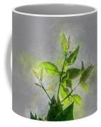 Fresh Growth Of Healthy Green Leafs  Coffee Mug