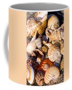 Mix Group Of Seashells Coffee Mug