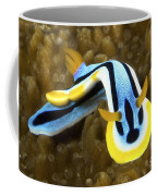 Nudibranch Feeding On Algae, Papua New Coffee Mug