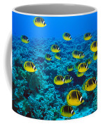 Raccoon Butterflyfish Coffee Mug