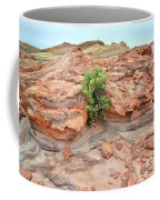 Sandstone Color In Valley Of Fire Coffee Mug