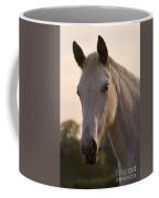 The Horse Portrait Coffee Mug