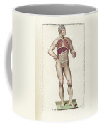 The Science Of Human Anatomy Coffee Mug
