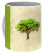 Umbrella Thorn Acacia Acacia Tortilis, Negev Israel Coffee Mug