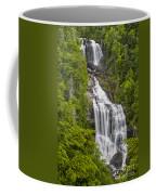Whitewater Falls Coffee Mug