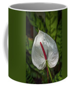 5129- Flower Coffee Mug