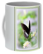 5276-001- Butterfly - Swallowtail Coffee Mug