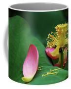 Blossoming Lotus Flower Closeup Coffee Mug