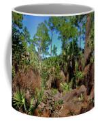 55- Everglades Afternoon Coffee Mug