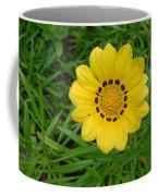 Australia - Daisy With Yellow Petals Coffee Mug