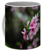 Blossoming Peach Flowers Closeup Coffee Mug