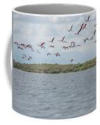 Colombia Sanctuary Of Flamingos Near Riohacha Coffee Mug