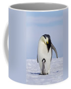 Emperor Penguin And Chick Coffee Mug