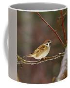 Eurasian Tree Sparrow Coffee Mug