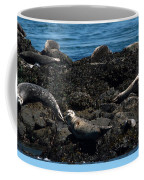 Clear Day Barn Coffee Mug