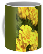 Tagetes Patula Fully Bloomed French Marigold At Garden In Octob Coffee Mug