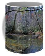 Great Smoky Mountains National Park Coffee Mug