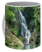 Beautiful Waterfall Coffee Mug