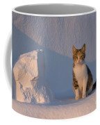 Cat On A Greek Island Coffee Mug