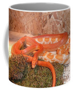Corn Snake Coffee Mug