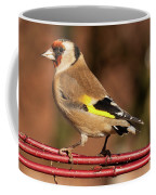 European Goldfinch Bird Close Up   Coffee Mug
