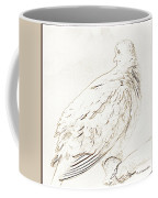 Mourning Dove, Animal Portrait Coffee Mug