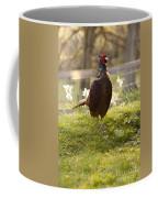 Mr Pheasant Coffee Mug