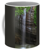 Serenity Falls Coffee Mug