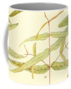 Vintage Botanical Illustration Coffee Mug