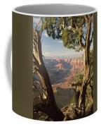 713261 V Desert View Grand Canyon Coffee Mug