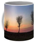 New Forest - England Coffee Mug